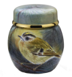 "Goldcrest Ginger Jar (S2-GC) 2.16"" tall. Freehand painted by Nigel Creed. Limited Edition of 25."